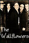 The Wallflowers Info Page